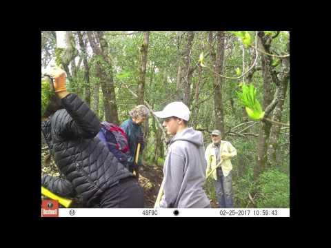 Orr Creek Trail Reroute StopAction