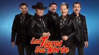 Los Tigres Del Norte - Puros Corridos Pesados pa pistear