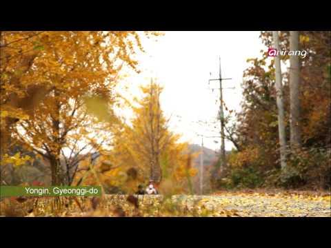 Travel Story Ep15 Eric Fileta's Life on a Korean Farm Mp3