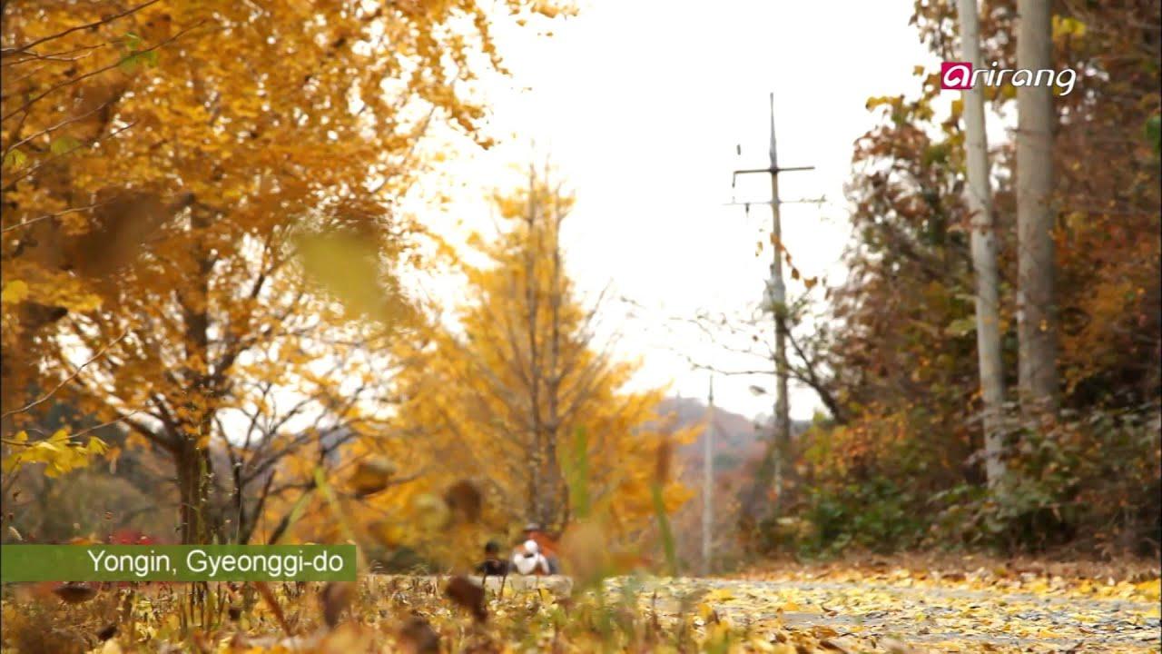 Travel Story Ep15 Eric Fileta's Life on a Korean Farm