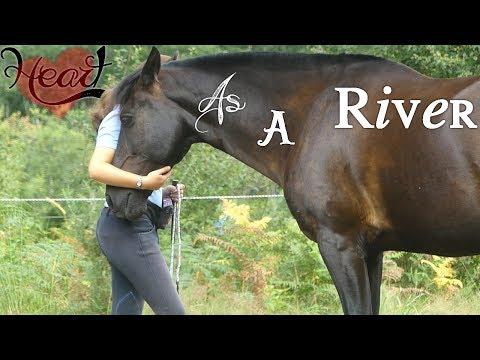 Heart as a River ♥