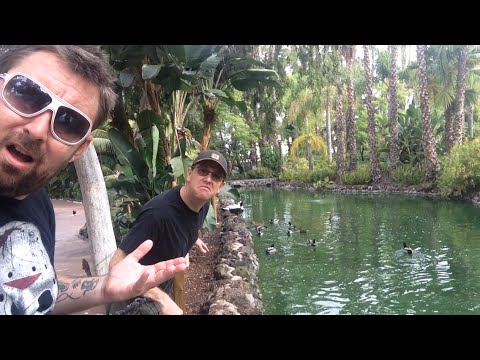 TDW 1200 - Extinct Attraction : Jungle Island Lagoon