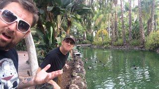 TDW 1200 - Extinct Attraction : Jungle Island Lagoon