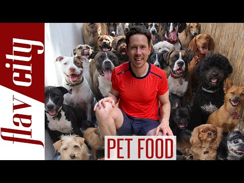 Pet Food Review - The BEST Food For Dogs & Cats...And What To Avoid!