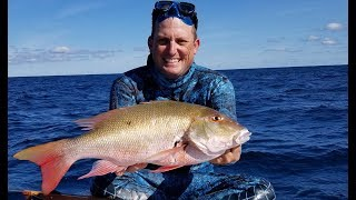 SPEARFISHING for DELICIOUS Fish! {Catch Clean Cook} Whole Roasted Snapper