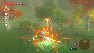 But why though!? - The Legend Of Zelda Breath of the wild