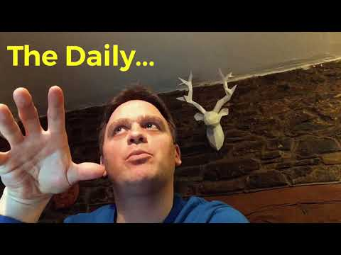 #17 The Daily Business Vlog