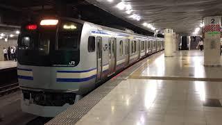 E217系クラY-49編成+クラY-101編成東京発車