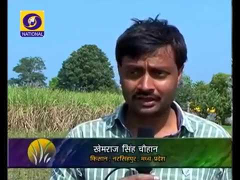 Shiv Yog Krishi on DD Naional