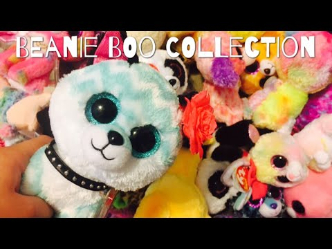 ENTIRE BEANIE BOO COLLECTION!!! (rares, exclusives, and more!!)