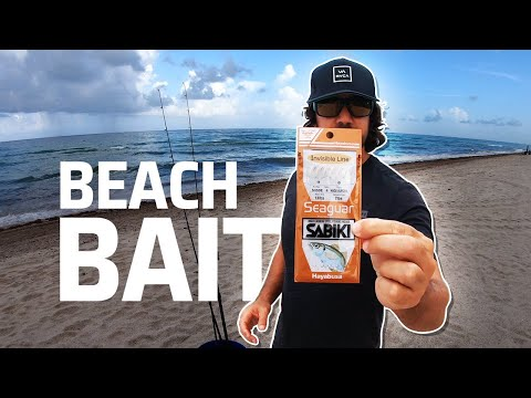 Use This Rig To Catch Live Bait From The Beach