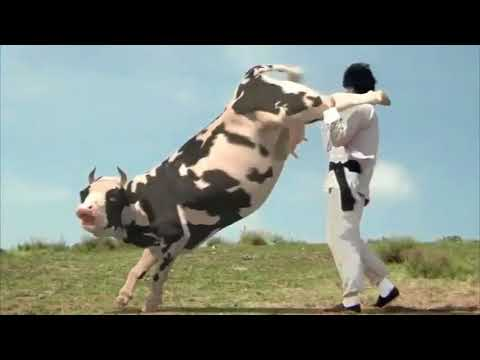 Download The Funny Man vs Cow Fight HQ