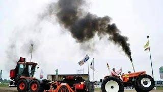 FIAT 1300DT Super | Tractorpulling team Schaeffer/den Engelsen | Trekkertrek Dirksland 2015