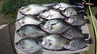 Crappie Fishing! Vertical Jigging Early Morning SLABS