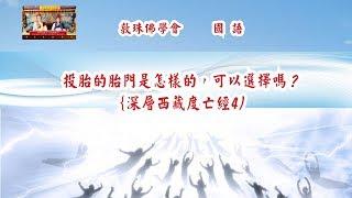 深層《西藏度亡經》4國語 : 投胎的胎門是怎樣的,可以選擇嗎?啤嗎哈尊金剛上師 敦珠佛學會 thumbnail