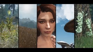 Realvision ENB is UPDATED! Realistic Graphic Mods 2017