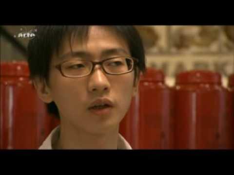 Deutschsprachige Dokumentation zum Taipei-101 (GEO)