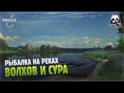 Рыбалка на реках. Волхов и Сура. Стрим Русская рыбалка 4/Russian Fishing 4