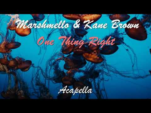 (acapella)-marshmello-&-kane-brown---one-thing-right-(vocal-only)
