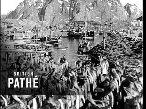 Norwegian Fishing Fleet Sets Sail (1941)