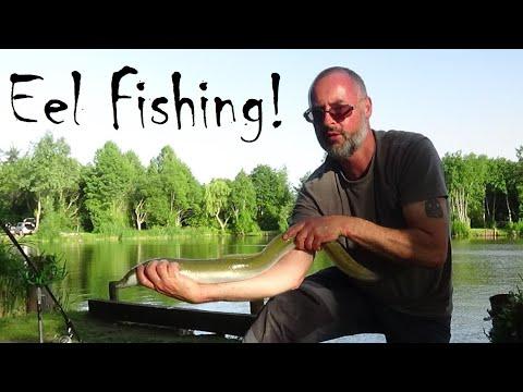 Eel Fishing And Eel Rigs (Vlog 6)