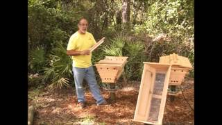 Top Bar Hive Basics