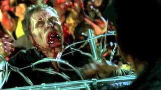 Dawn of the Dead: Sailing the Sea of Zombies