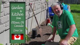 Beefsteak Tomato Challenge Zone 5 Ottawa, Canada