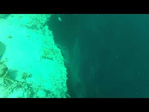 marco campanelli free diving at Dean´s Blue Hole
