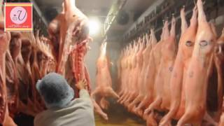 The Pork Shop ( Virginia Farms Inc.,)