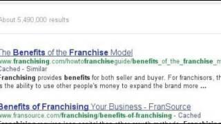 Google Search: Franchise