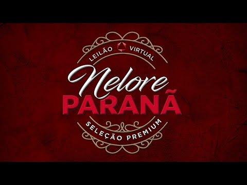 Lote 12   Jacob FIV Paranã   PAR A1792 Copy