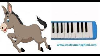 Melodika Eğitimi - Arkadaşım Eşek Melodika Resimi