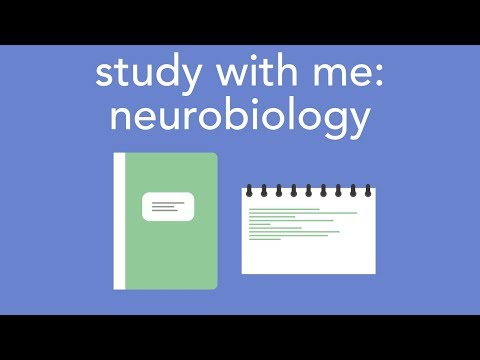 study with me: neurobiology