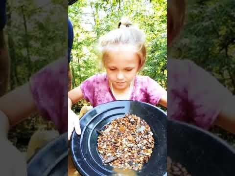 Struck Gold Reeds Gold Mine, NC