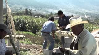 PRODUCCIONES TORRES 3 Pozuelos 2013