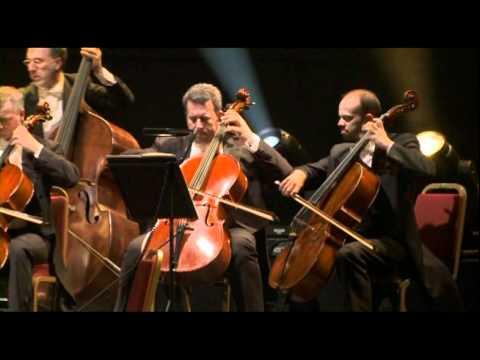 I Virtuosi Italiani e Ludovico Einaudi, Londra 2010 .dv