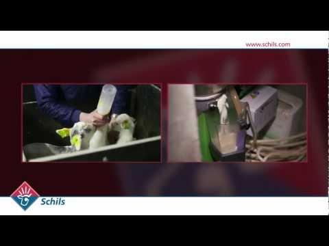 Company presentation Schils BV