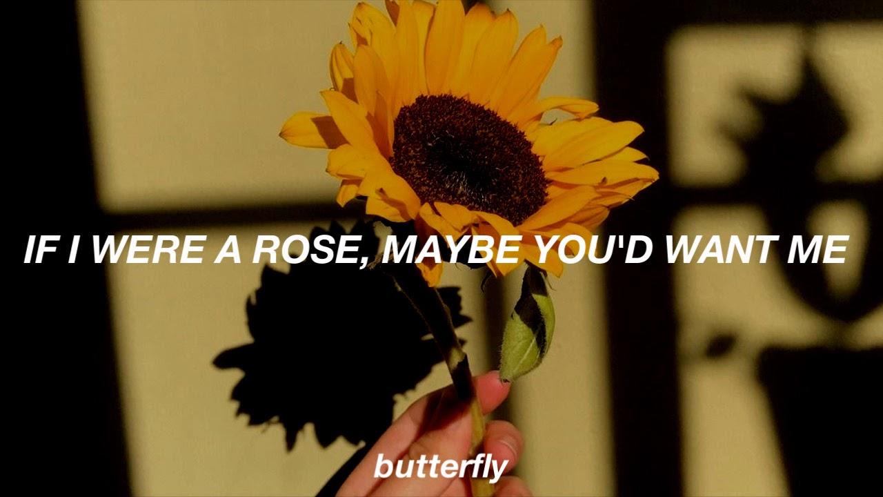 Sierra Burgess - Sunflower // Lyrics (Shannon Purser ...