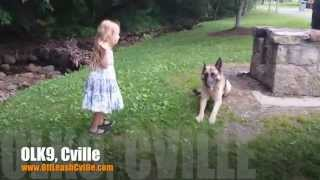 So Easy A Child Can Do It | German Shepherd | Dog Training Harrisonburg