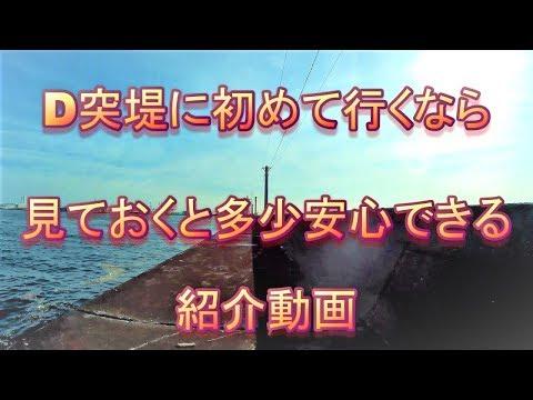 D突堤に初めて行くなら見ておくと多少安心できる紹介動画