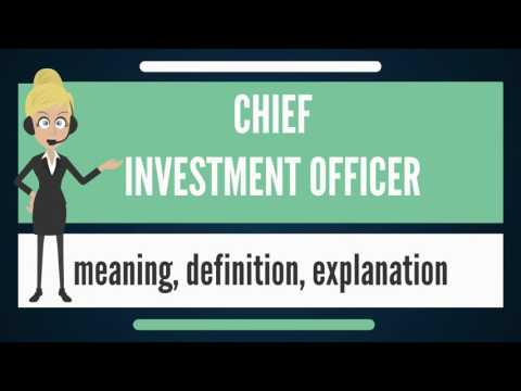 What is CHIEF INVESTMENT OFFICER? What does CHIEF INVESTMENT OFFICER mean?