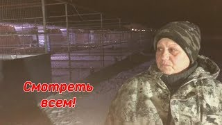 Миллион просмотров и миллион рублей - цена жизни тысячи собак! The price of life for 1000 dogs!