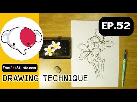 ครูช้างสอนวาด ตอนที่ 52/การวาดรูปดอกไม้(ฝึกร่างภาพ)