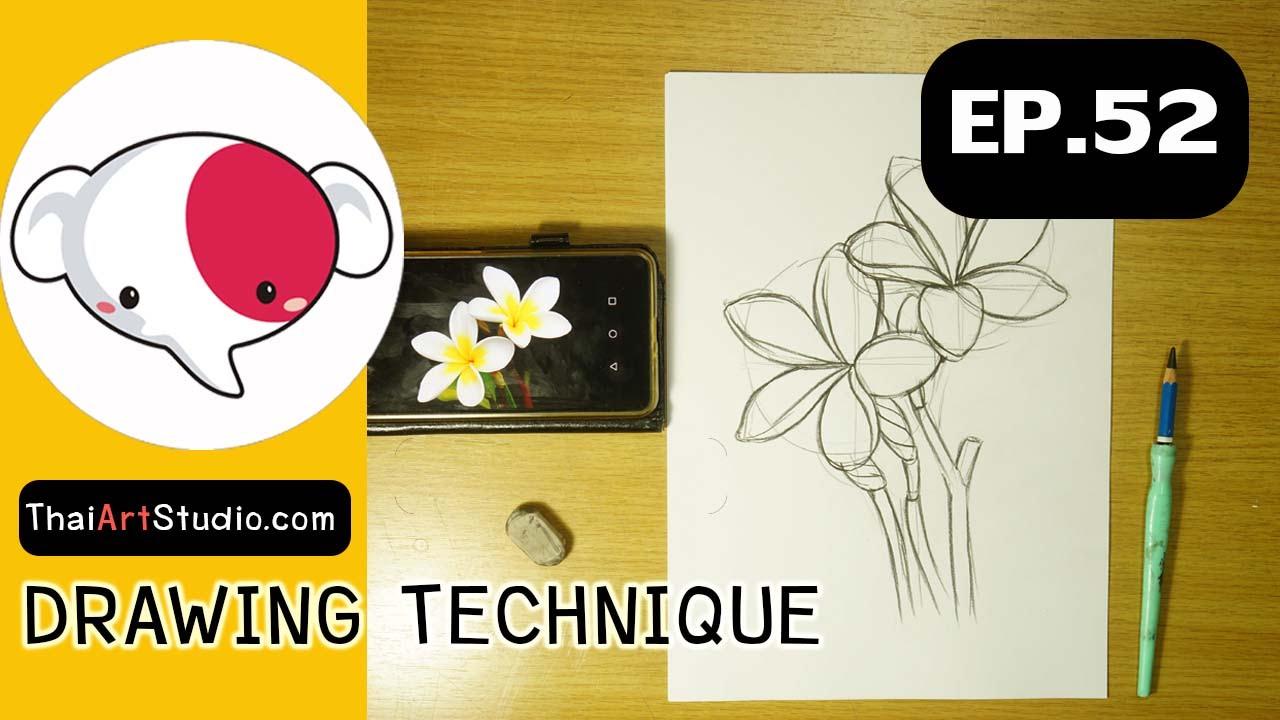 ครูช้างสอนวาด ตอนที่ 52/สอนวาดรูป ดอกไม้(ฝึกร่างภาพ)