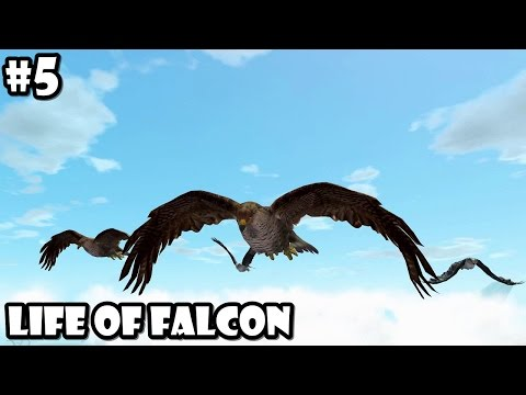 Ultimate Bird Simulator - Life of Falcon - Android/iOS - Gameplay Part 5