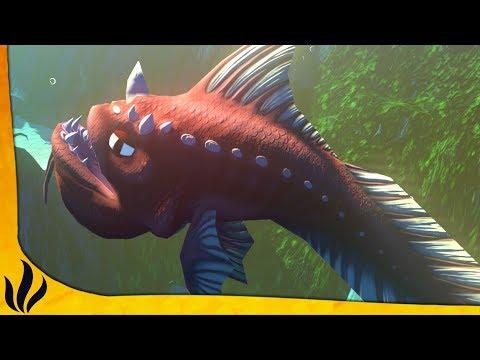 DRAITH LVL 100 ! (Feed and Grow: Fish)