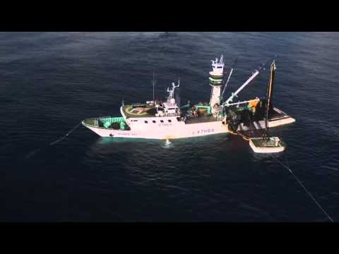 Fishing purse seine