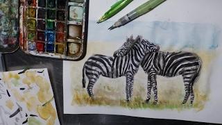 Dessiner des zebres/Drawing zebras