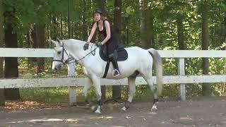 Строевая рысь. Учимся сопровождать движения лошади.
